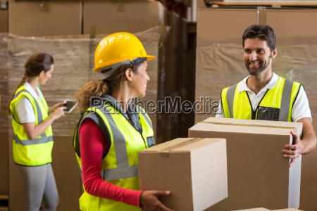 portrait of workers are holding cardboard