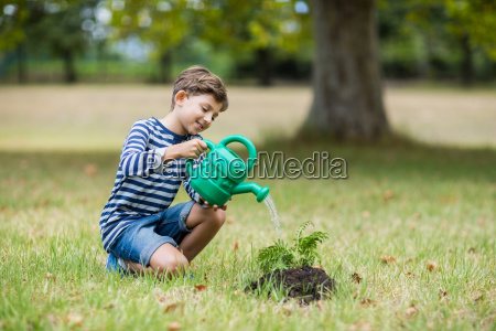 boy watering a young plant