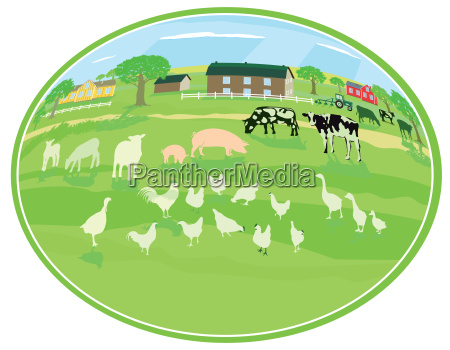 country life with animals