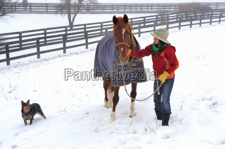 woman with her dog and horse