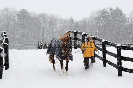 woman carrying horse in snowy landscape