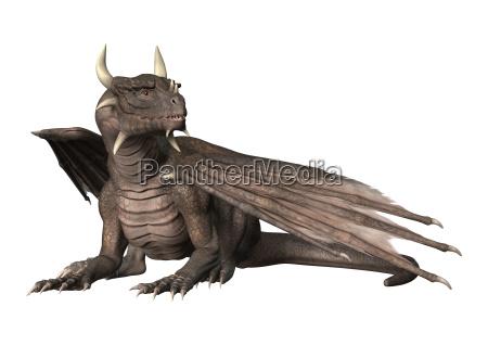 3d rendering fantasy dragon auf weiss