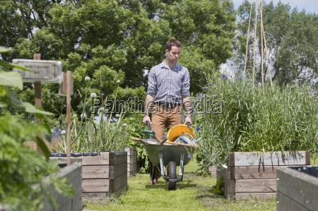 man with wheelbarrow gardening in sunny