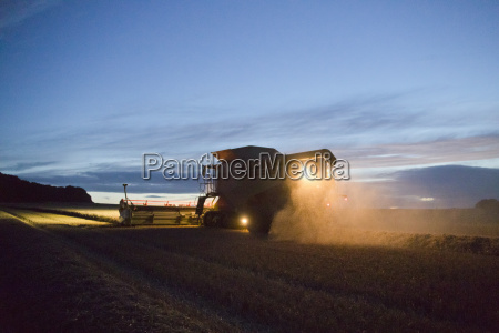 combine harvester harvesting wheat crop at