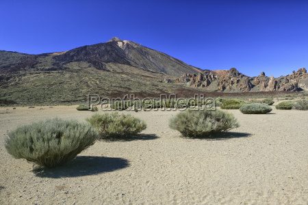 spain tenerife landscape at teide national