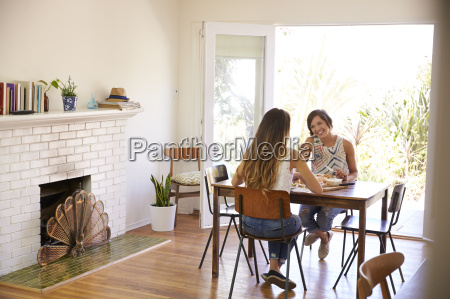 two female friends enjoying meal at