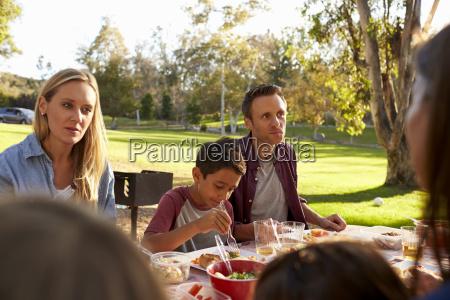 zwei familien mit einem picknick im
