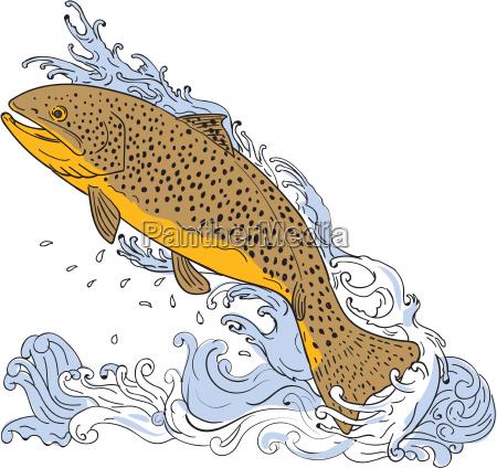 braune forelle schwimmt turbulente wasserzeichnung