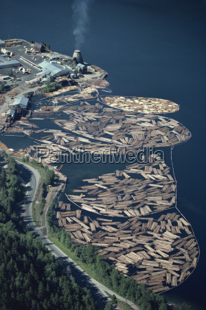 aerial view of logs in the