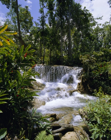 dunns river falls jamaica caribbean west
