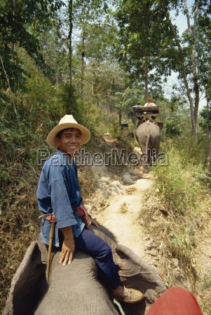 tourists taking elephant ride at elephant