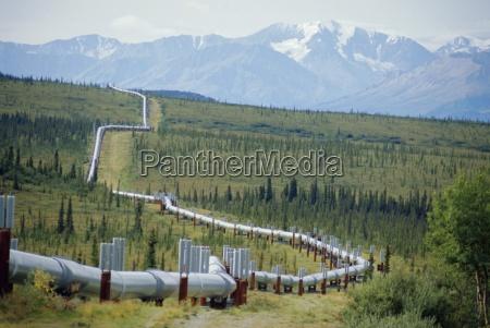 die trans alaska oil pipeline die