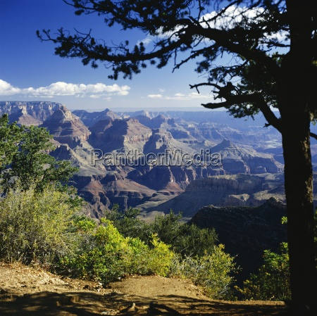 view over the grand canyon unesco