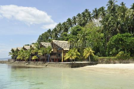 pearl farm resort on samar island