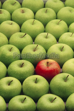 einziger roter apfel unter vielen gruenen