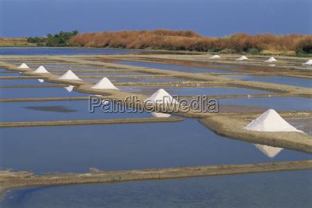 salt pans in marshes ile de