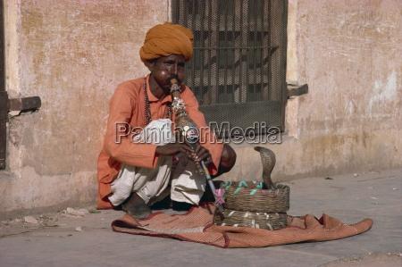 snake charmer jaipur rajasthan india asia