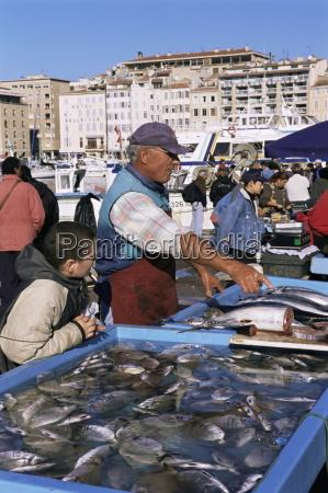 fish market vieux port marseille bouches