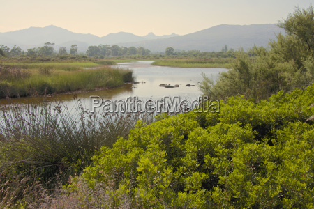 typical sardinian landscape water pond and