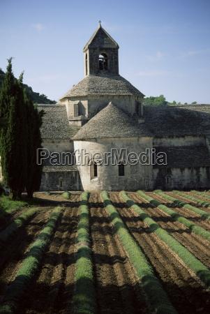 abbaye de senanque gordes vaucluse provence