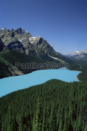 peyto lake banff nationalpark unesco weltkulturerbe