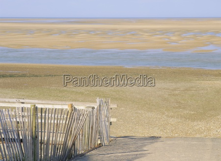 west sands at low tide from