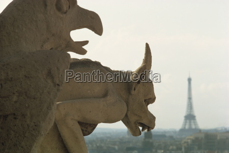 gargoyles on notre dame cathedral and