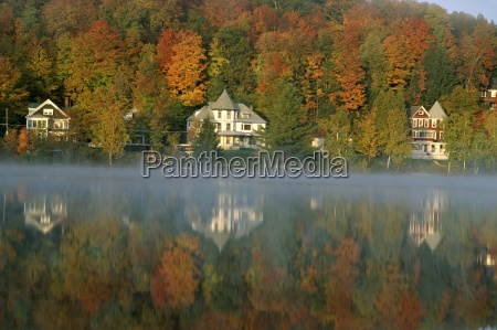 large houses beside lake flower at