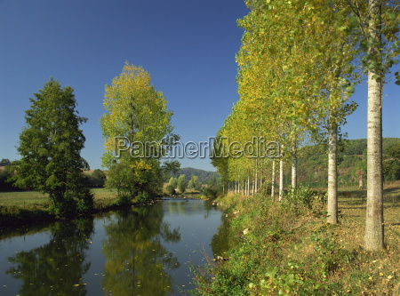tranquil scene of trees reflected in