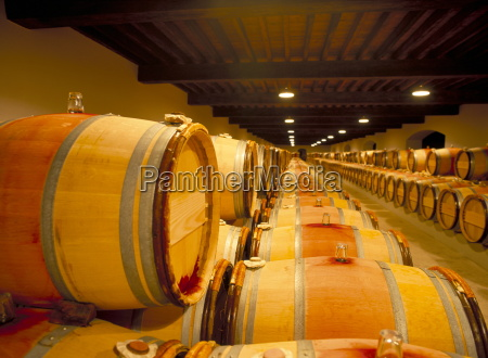 cellars of chateau lynch bages pauillac