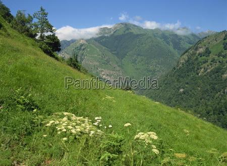 vallee daspe bearn pyrenees atlantique aquitaine