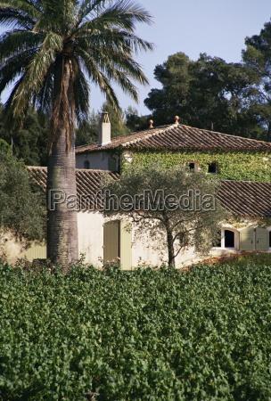 vineyards clos mireille cotes du provence