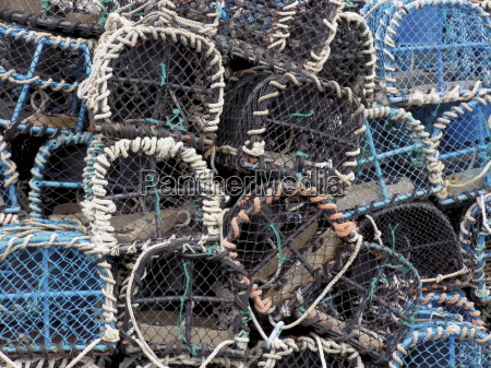 lobster pots in the fishing harbour