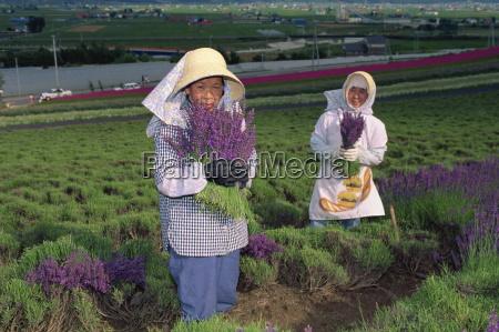 portrait of women at work in