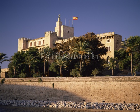 the almadaina palace amongst palm trees