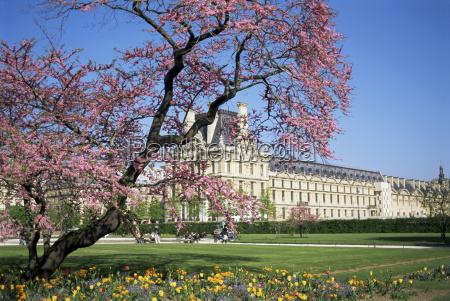 jardin des tuileries and musee du