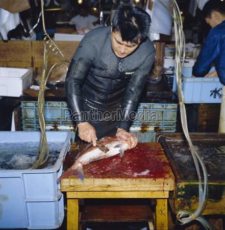 schneiden von lebenden fischen morgenfischmarkt tsukiji