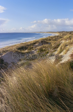 northern beach chatham islands pacific islands