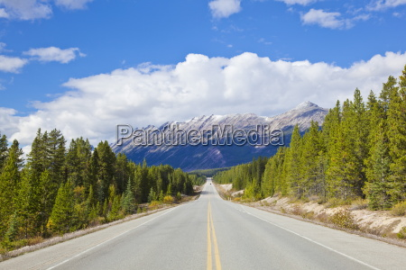 fahrt reisen farbe baum nationalpark horizontal