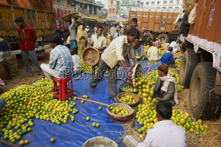fruit market kolkata calcutta west bengal