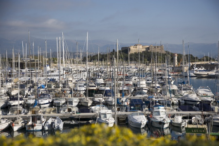 antibes harbour and fort carre antibes