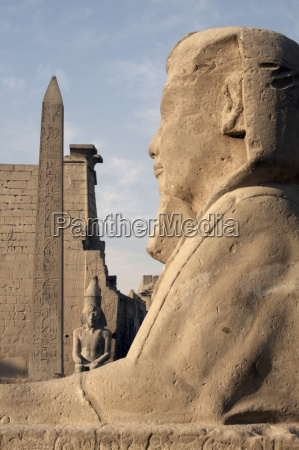 a sphinx stands in front of