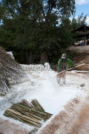 man buendel von bambus in limewash