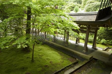 ryoanji temple moss garden ryoan ji