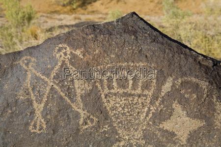 petroglyph national monument boca negra canyon