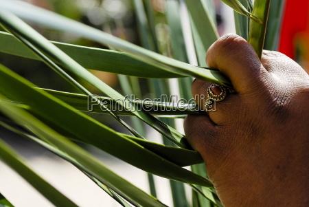 palmsonntag, paris, ile, de, france, frankreich, europa - 20757971