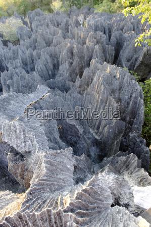 tsingy de bemaraha strenges naturschutzgebiet unesco