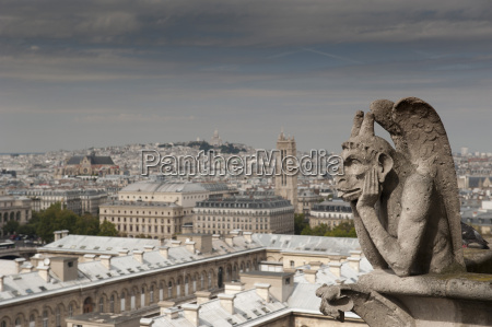 gargoyle of gothic notre dame cathedral