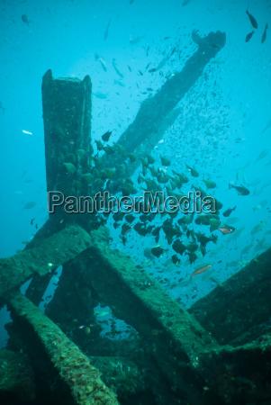 wreck diving southern thailand andaman sea