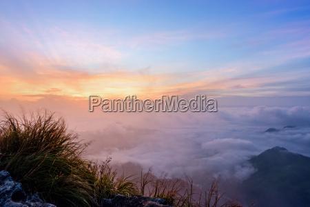 sonnenaufgang im phu chi fa forest